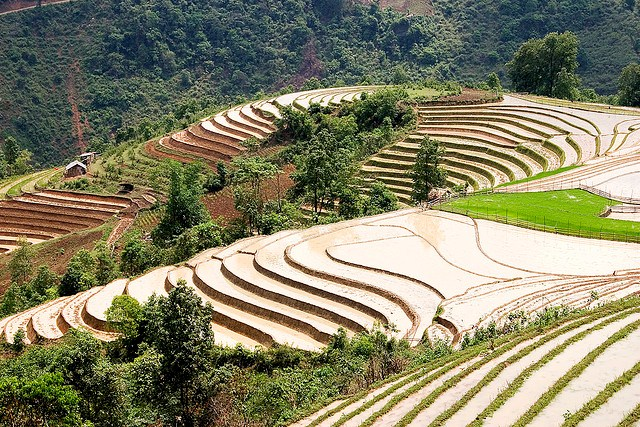 Sa Pa Terraces, Vietnam