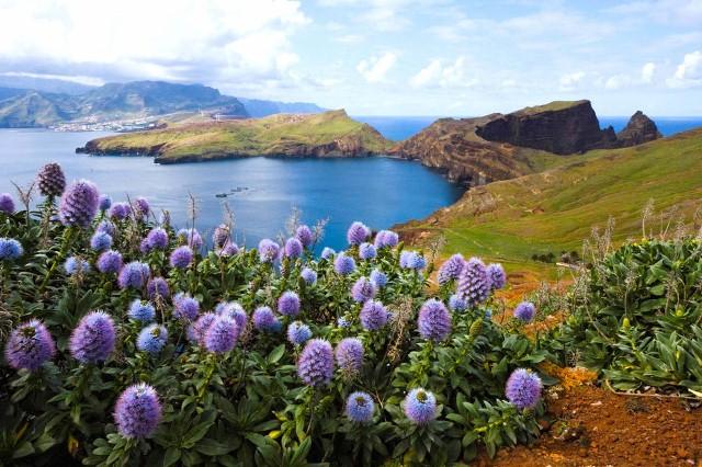 6. Madeira (Portugalia)
